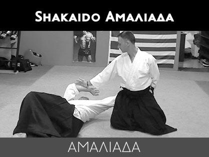 Shakaido Αμαλιάδα